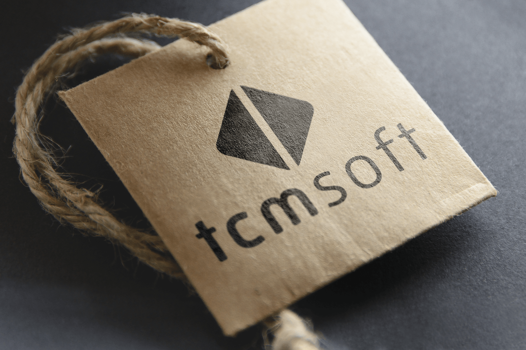 Logo TCMsoft. Design: Werner Schauer, triptychon corporate communications